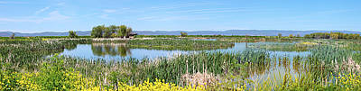 National Wildlife Preserve Marshes In Klamath Falls Oregon. Print by Gino Rigucci