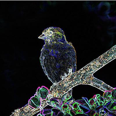 Neon Goldfinch Art Print by Betty LaRue
