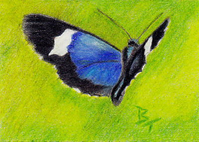 Painting - On The Wings Aceo by Brenda Thour