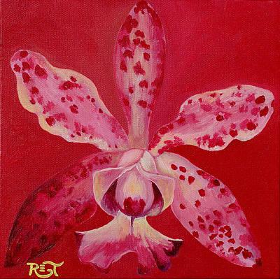 Orchid Cattleya Brabantiae Original by Renee Thompson