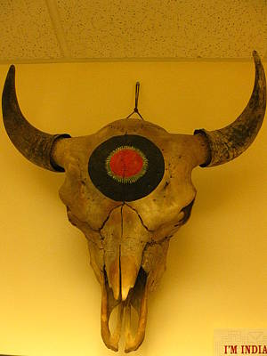 Indictment Sculpture - Painted Bison Skull by Austen Brauker