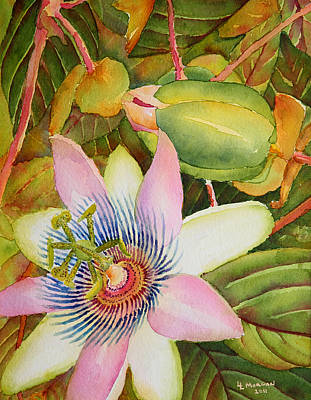 Passion Flower Vine Painting - Passion Flowers by Lynn Morgan -                            L L Morgan Art