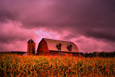 Farm Scene Photograph - Pink Barn  by Emily Stauring