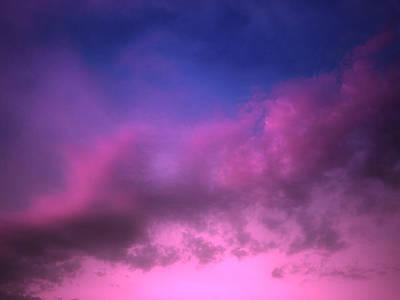 Photograph - Purple Haze by Tara Turner