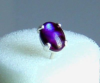 Purple Paua Shell Tie Tack Original by Robin Copper