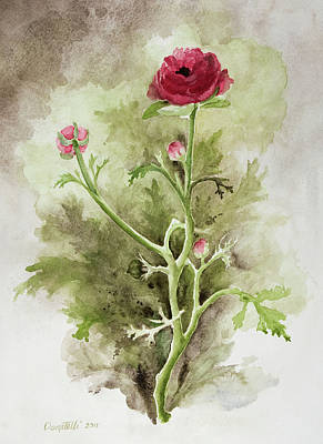 Painting - Red Ranunculus by Kathryn Donatelli
