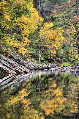 Reflections Of Natural Color Art Print by JC Findley