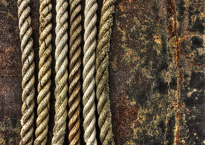 Northport Photograph - Ropes by Evelina Kremsdorf