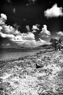 Photograph - San Andres Island Rocks by John Rizzuto