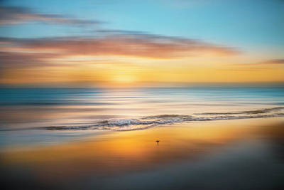 Photograph - Sandpiper Sunrise Dreamscape by Debra and Dave Vanderlaan