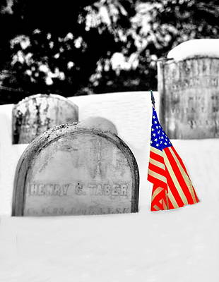 Photograph - Snowy Patriot by Emily Stauring
