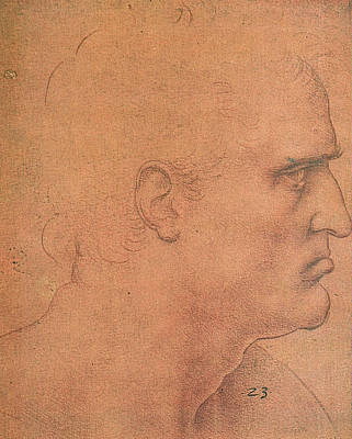 Closeup Drawing - Study For The Last Supper, Apostle Bartholomew by Leonardo da Vinci