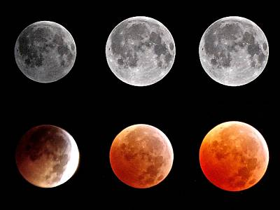 In A Row Photograph - Total Eclipse Of Heart Sequence by Joannis S Duran / Freelance Photographer