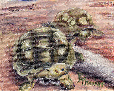 Painting - Turtle Friends by Brenda Thour
