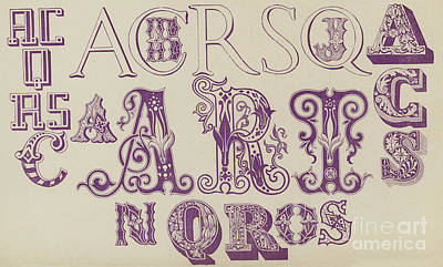 Vintage Fonts    Examples Of Letters  Art Print