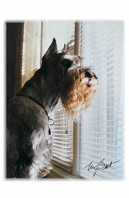 Waiting At The Window Art Print by Maxine Bochnia