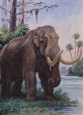 When The Age Of Man Began, The Mastodon Art Print by Charles R. Knight