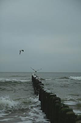 Photograph - Winter Ocean by Ania M Milo