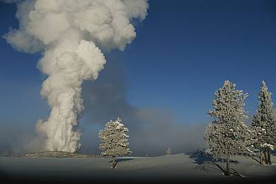 Winter View Of Old Faithful Geyser Art Print by Norbert Rosing