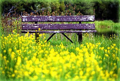 Art Print featuring the photograph Wooden Bench by Emanuel Tanjala