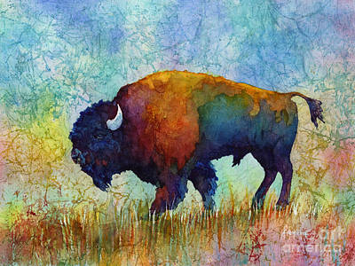 Royalty-Free and Rights-Managed Images - American Buffalo 5 by Hailey E Herrera