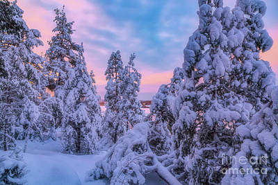 Royalty-Free and Rights-Managed Images - Snowy 5 by Veikko Suikkanen