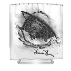 Shades Of Sunday Shower Curtain by Laurie L