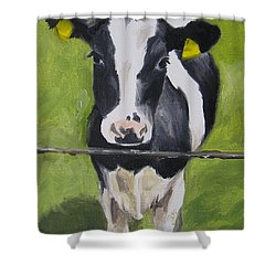 A Heifer Shower Curtain by Jindra Noewi
