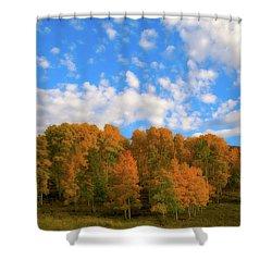 Shower Curtain featuring the photograph Aspens by Steve Stuller