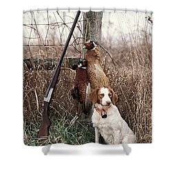 Brittany And Pheasants - Fs000757b Shower Curtain