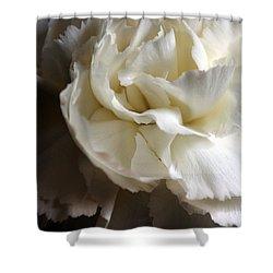 Shower Curtain featuring the photograph Flower Beauty by Deniece Platt