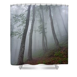High Forest Shower Curtain by Evgeni Dinev
