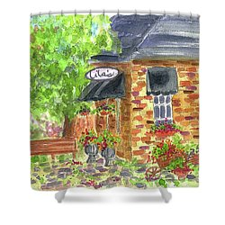 Shower Curtain featuring the painting Lila's Cafe by Cathie Richardson
