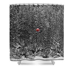 Orb Shower Curtain by Stuart Turnbull