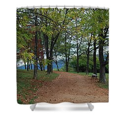Pathway Shower Curtain by Eric Liller