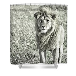 The King Stands Tall Shower Curtain by Darcy Michaelchuk