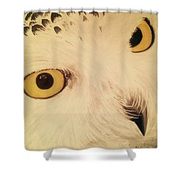View Of Nature Shower Curtain by Annie Poitras