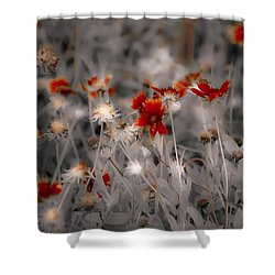 Wildflowers Of The Dunes Shower Curtain