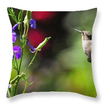 Going Home Throw Pillow by Lynn Bauer