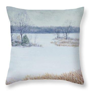 Winter Lake And Cedars Throw Pillow