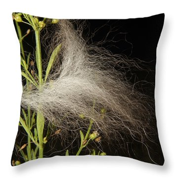 Throw Pillow featuring the photograph A Siberian Husky Passed By by Lynda Dawson-Youngclaus