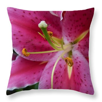 Abstract Pink Lily3 Throw Pillow