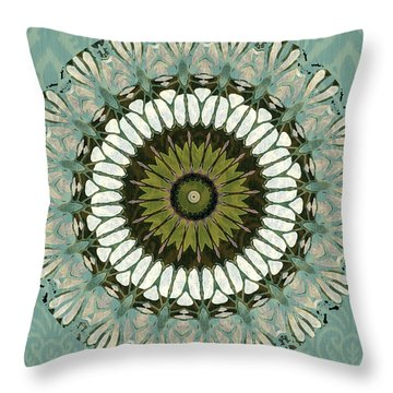 Aquamarine Abstract Throw Pillow by Bonnie Bruno