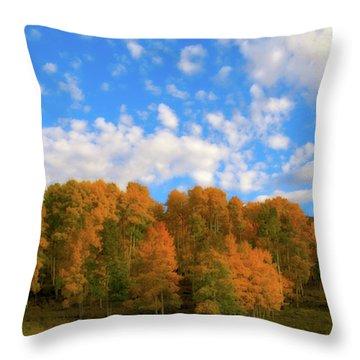 Throw Pillow featuring the photograph Aspens by Steve Stuller
