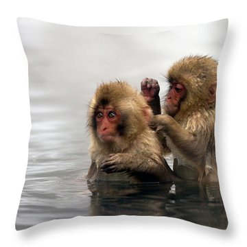 Wild Throw Pillows