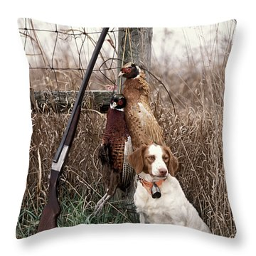 Brittany And Pheasants - Fs000757b Throw Pillow