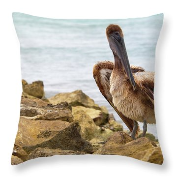 Brown Pelican Throw Pillow by Sebastian Musial