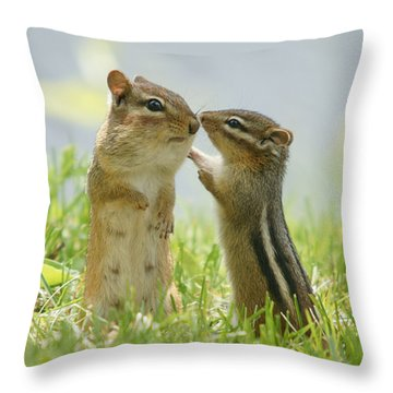 Animal Themes Throw Pillows