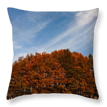 Compact Forest Throw Pillow by Evgeni Dinev