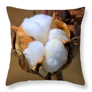 Cotton Boll Throw Pillow